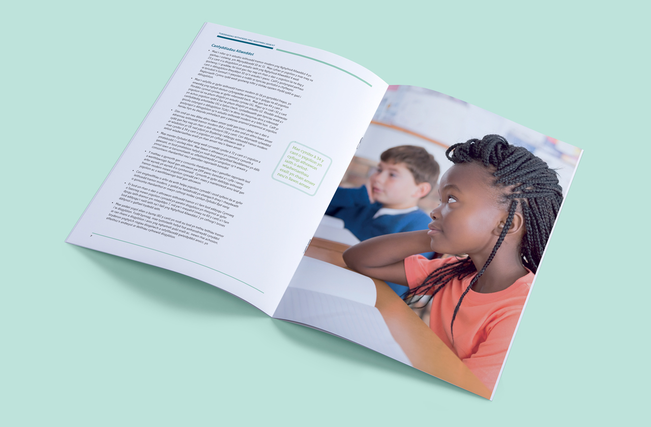 British Council for Wales internal brochure