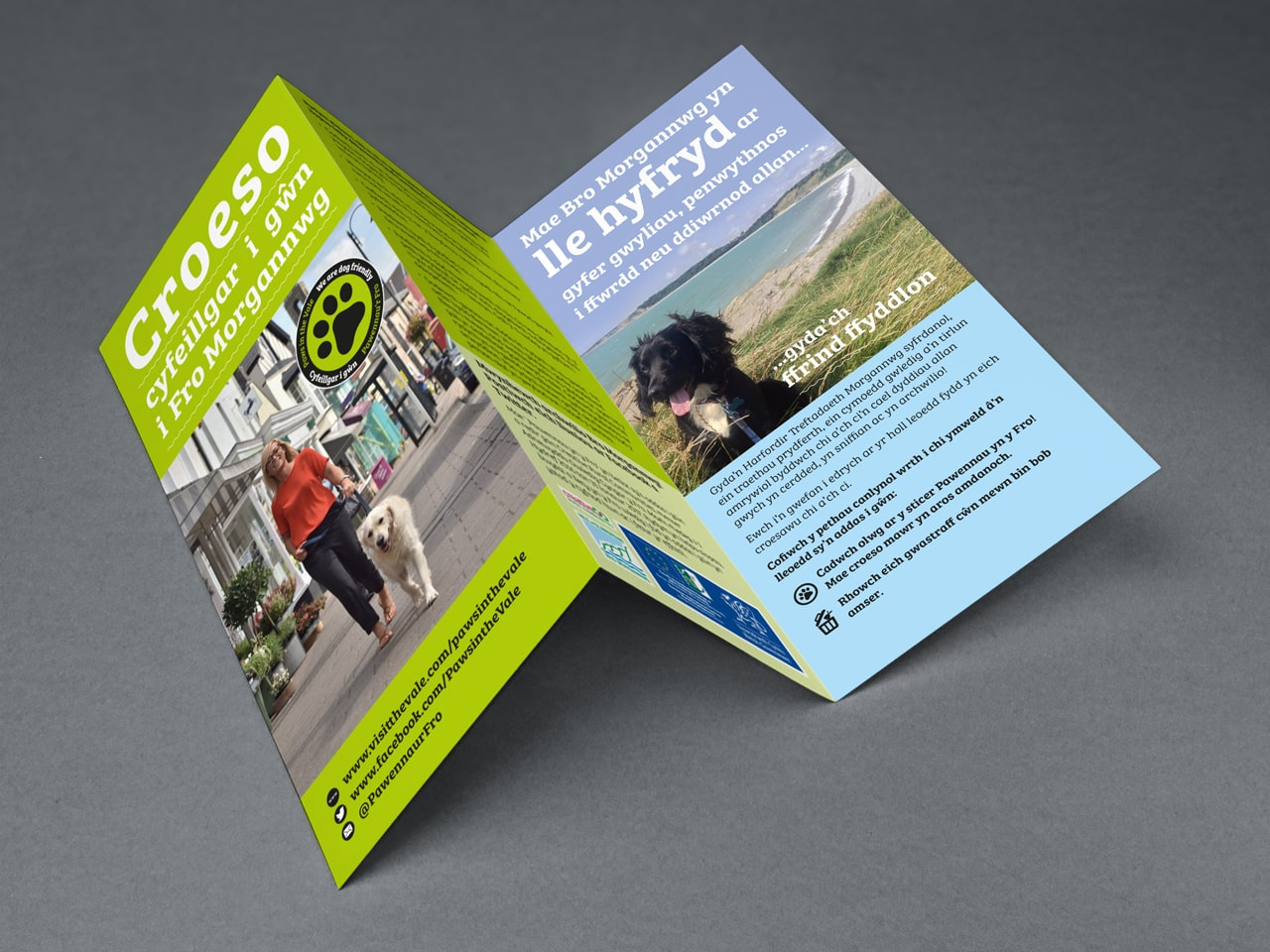 paws in the vale leaflet